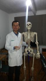 Esqueleto para las clases de Ciencias Eje Cuerpo Humano.