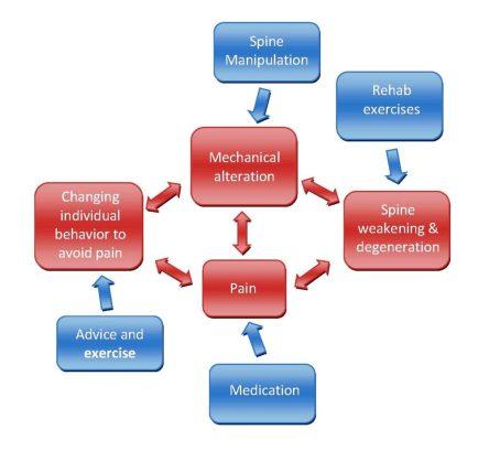 Spine pain treatment diagram