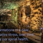 Key to Maintaining Good Spine Health