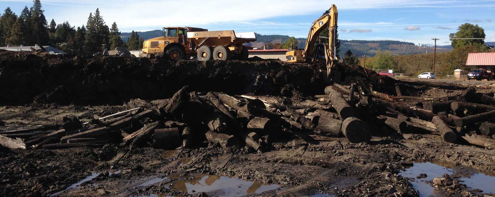 Brownfield remediation of a mill pond