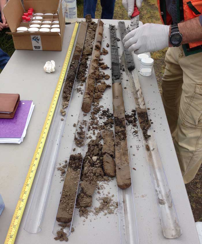 Core samples taken at a contaminated site investigation