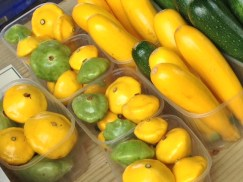 courgettes-yellow-and-green