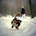 Run on the Snow by betbele, used under CC BY-NC-SA 2.0 / Unmodified
