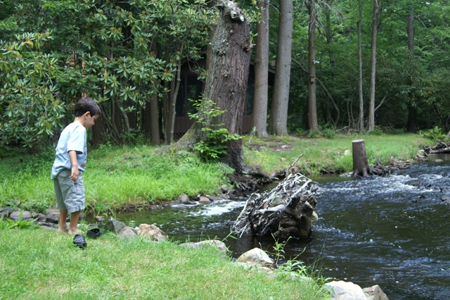 My son on the island in the stream