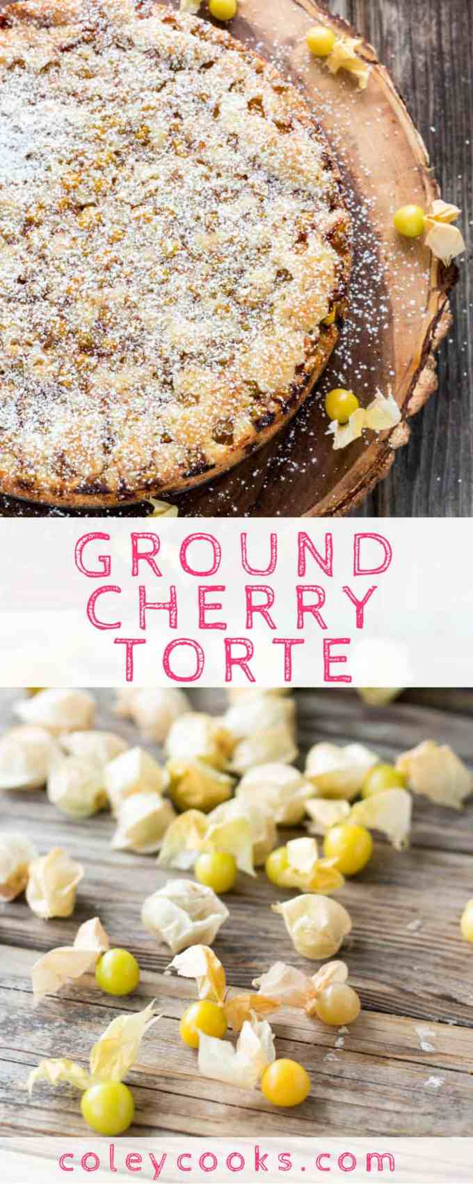 GROUND CHERRY TORTE | This easy cake recipe uses ground cherries aka husk cherries or gooseberries! It's dense and moist and absolutely delicious #easy #groundcherries #gooseberries #cake #recipe | ColeyCooks.com