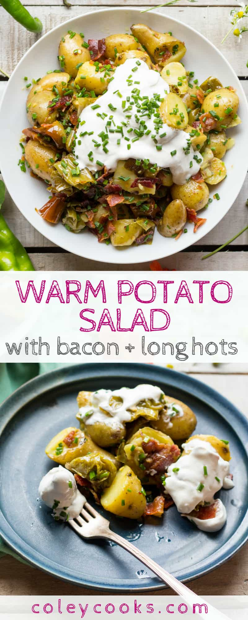 WARM POTATO SALAD with BACON + LONG HOTS | My favorite potato salad recipe has no mayonnaise and tons of flavor from crispy bacon, spicy long hots, sour cream and chives. #potatoes #salad #side #reicpe #summer | ColeyCooks.com