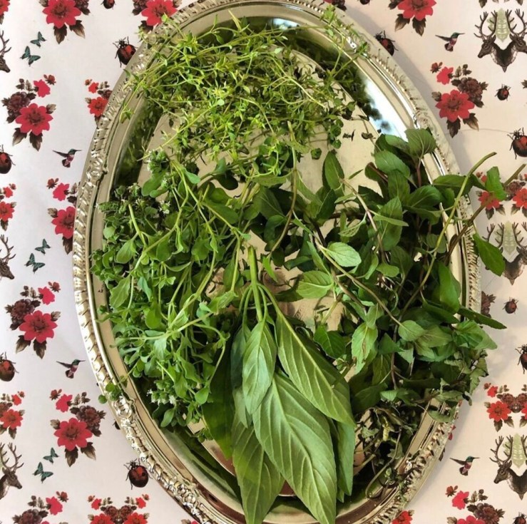 Magical Herbal Uses