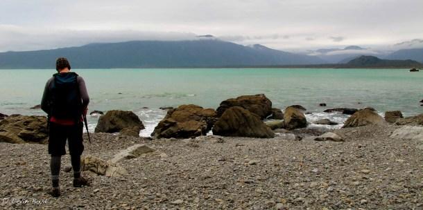Boyd-Fiordland-0294