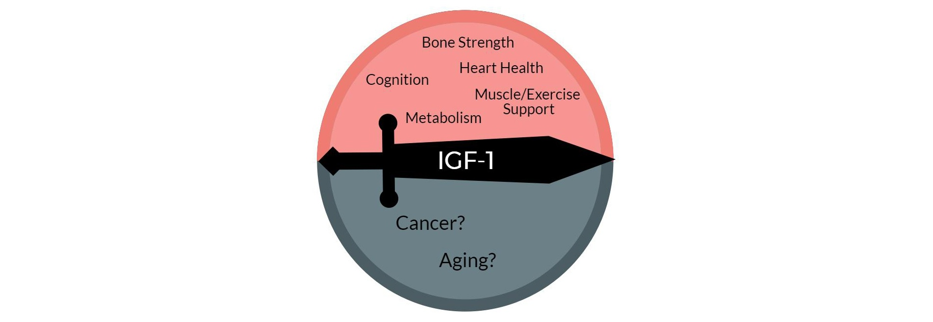 ketogenic diet and igf-1 igfbp-1