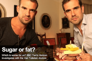 fat versus sugar Horizon BBC2