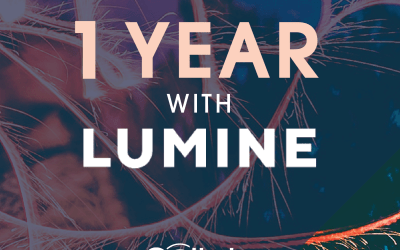 One year with Lumine