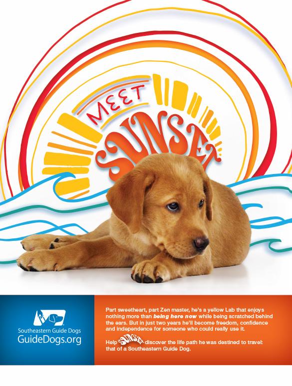 Meet Sunset ad