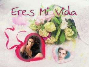 Collages con Flores y Corazones.