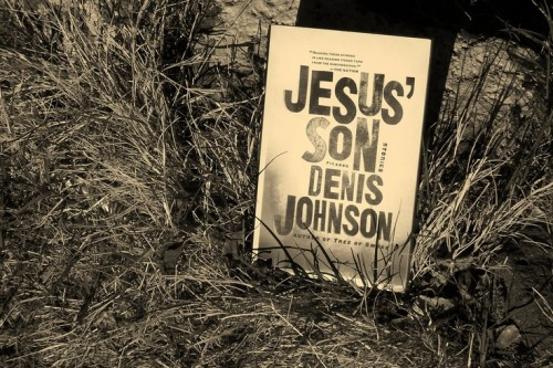Jesus' Son: Stories by Denis Johnson, Will Patton (Narrator)