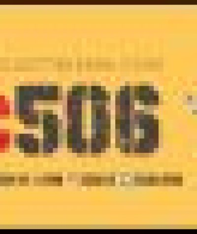 Nightwing-robin-dick-grayson-nightwing-10066889-507-600