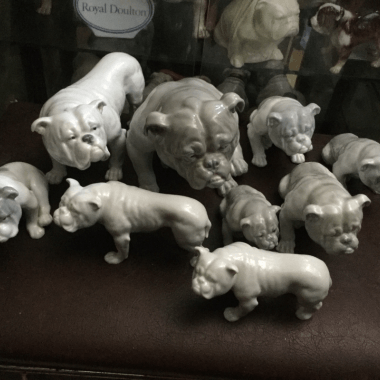 Collections within the Collectibulldogs collection