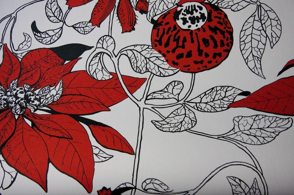 botanica-red-rooney