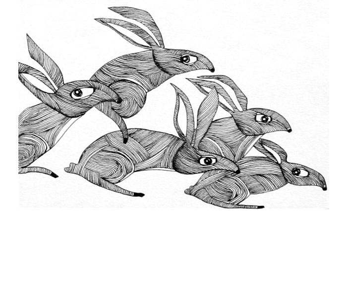 rabbit-pack