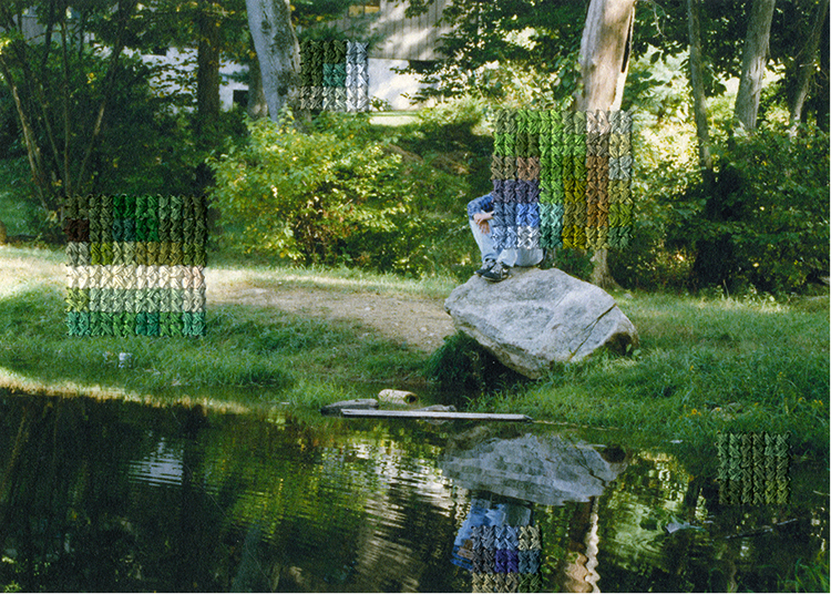 Diane Meyer  - New Jersey IX 1989 - 2012