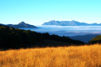 View out over the beautiful Tablelands, looking towards the Leslie Karamea Track in the early morning.