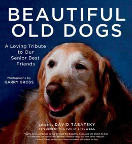 Beautiful Old Dogs A Loving Tribute to Our Senior Best Friends