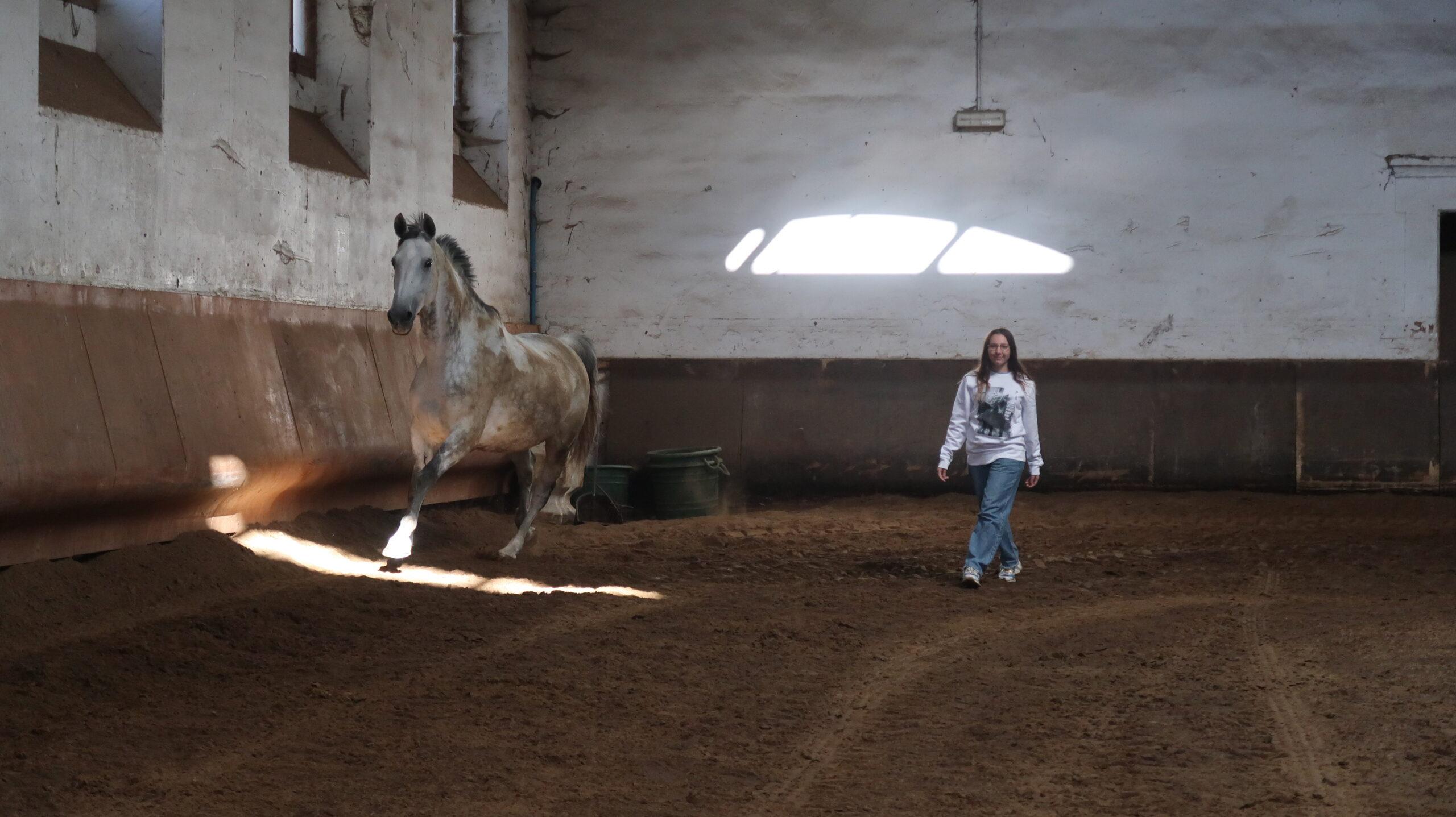 Devenir propriétaire d'un cheval