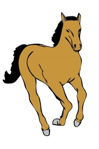 Mettre en valeur la robe de son cheval