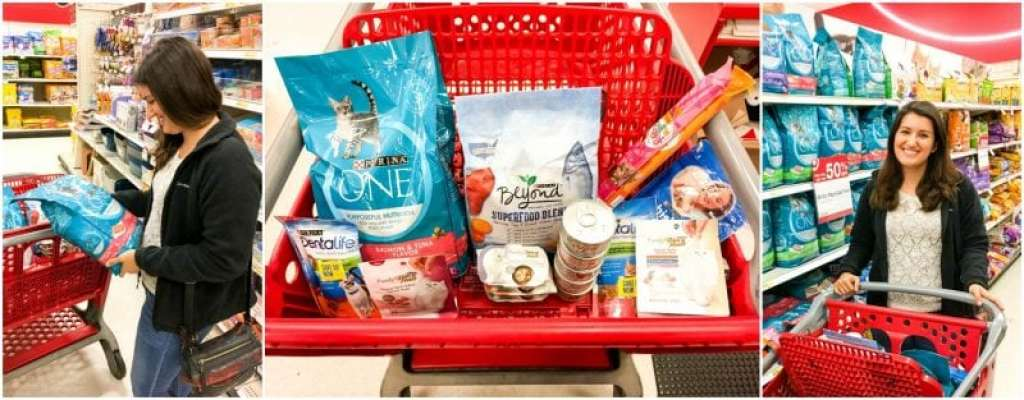 target-in-store-purina