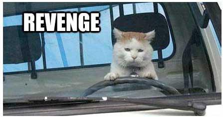 cycle 3 task 02, Josef Kaplan, Vengeance Is Mine