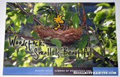 Woodstock - Small is Beautiful
