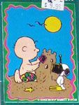 Charlie Brown on the Beach