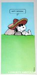 Joe Cool Sombrero Birthday Greeting Card