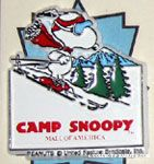 Snoopy Skiing on Hill