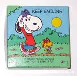 Snoopy and woodstock with sunglasses