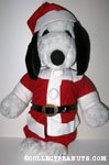 Snoopy Santa Outfit