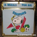Snoopy with sports equipment 'A Beagle for all Seasons' Cube Footlocker
