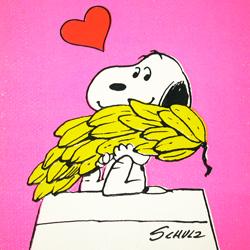 Peanuts Greeting Card Books