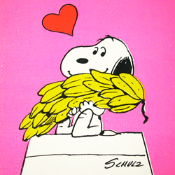 Click to View Peanuts Greeting Card Books