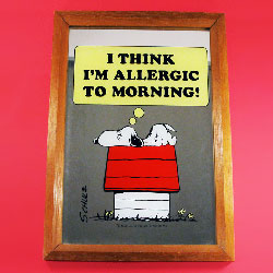 Mornings with Snoopy