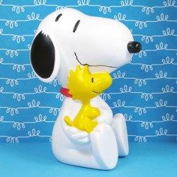 Click to shop Peanuts Pins
