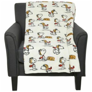 Snoopy Sheets & Berkshire Blankets from eBay