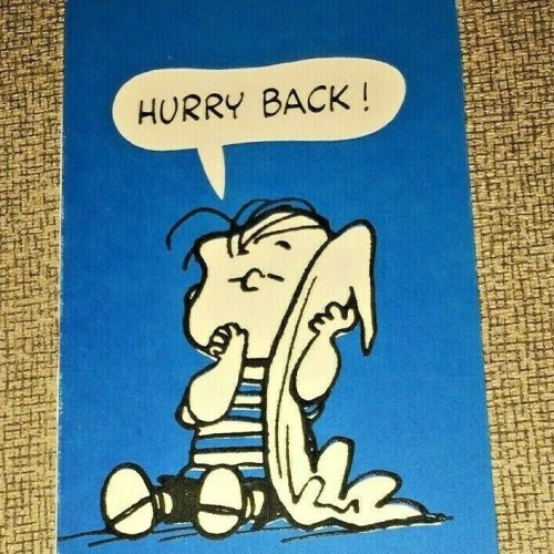 Vintage Peanuts Hallmark Greeting Card