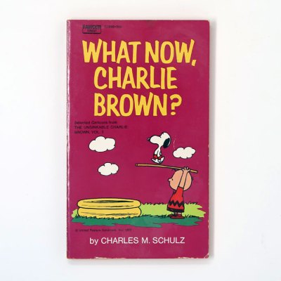What now, Charlie Brown? Book