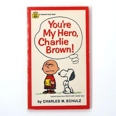 You're My Hero, Charlie Brown Book