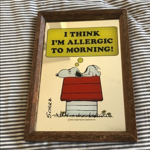 Vintage Snoopy Mirror Picture