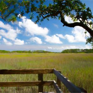 View of Savannah tidewater