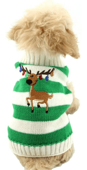 holiday dog sweater for small dogs