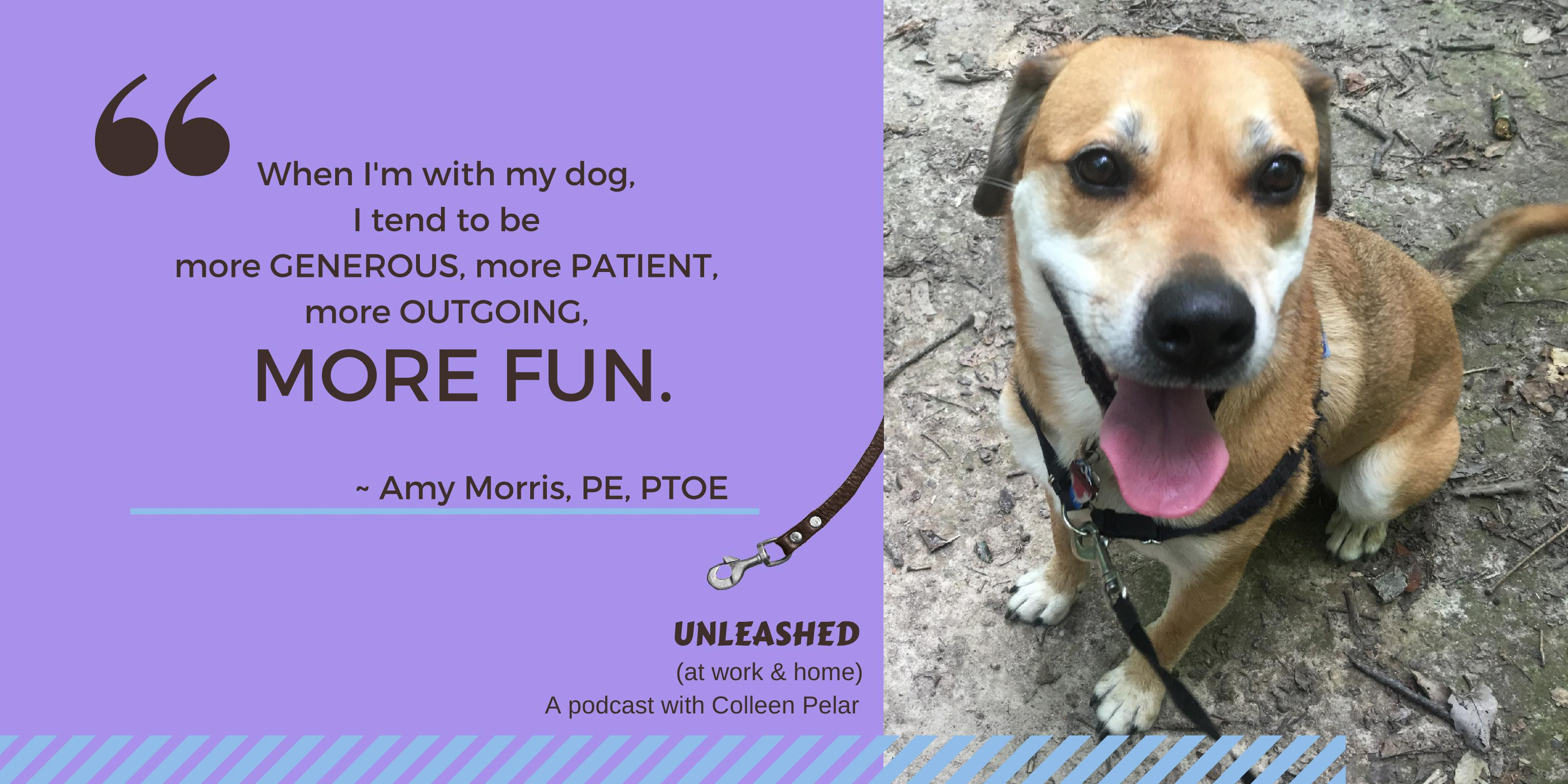 Amy Morris, PE, PTOE, is president of T3 Design, transportation engineering company dedicated to solving traffic problems. She talked with Colleen Pelar on the UNLEASHED (at work & home) podcast about why problem-solving isn't as clear-cut as many think and shared tips for improving your problem-solving skills. Another fascinating look at the behavior of dogs and of people.