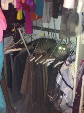 Hide and Seek in my closet.....