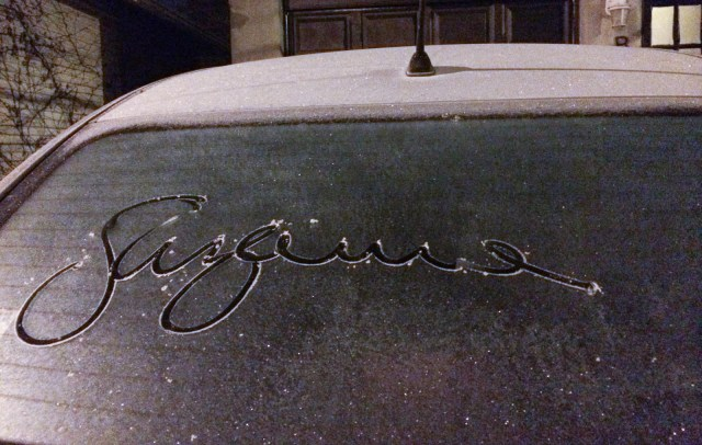 suzanne car frost